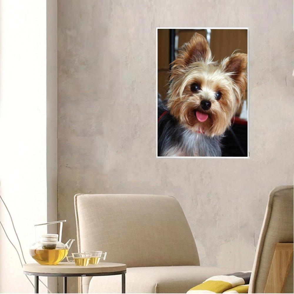broderie diamant chien, chien en broderie souriant, meilleur broderie diamant chien, kit broderie diamant chien