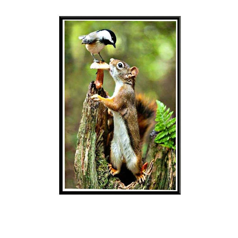 Ecureuil entrain de manger